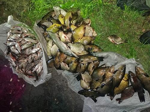 На Буринщині порушники завдали збитків на суму понад 21 тис. грн, - Сумський рибоохоронний патруль