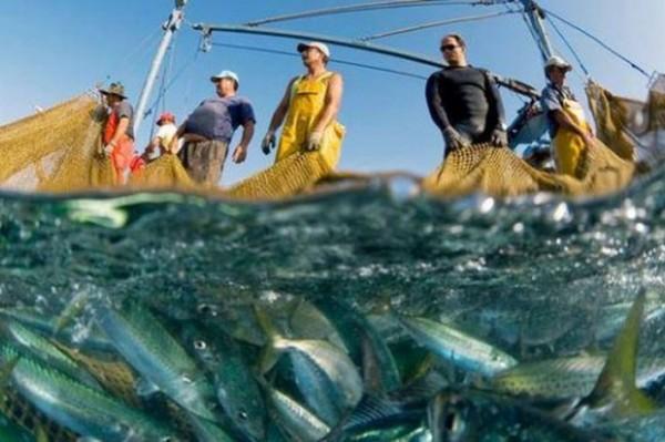 27 червня - всесвітній день рибальства