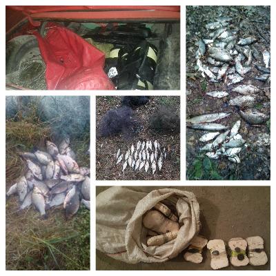 Збитки, завдані рибним запасам області у вересні, склали більше 42 тис. грн, - Сумський рибоохоронний патруль